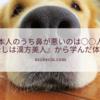 日本人のうち鼻が悪いのは○○人!『わたしは漢方美人』から学んだ体の秘密