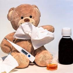 インフルエンザ、ノロウイルス……冬の感染症にご用心!【すぐに役立つ健康講座】