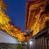 京都・亀岡 - 紅く染まる鍬山神社
