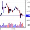 ビットコインの過去チャートを見て安心してガチホしてみる