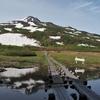 ◆'20/06/06   鳥海山・祓川より康新道へ②