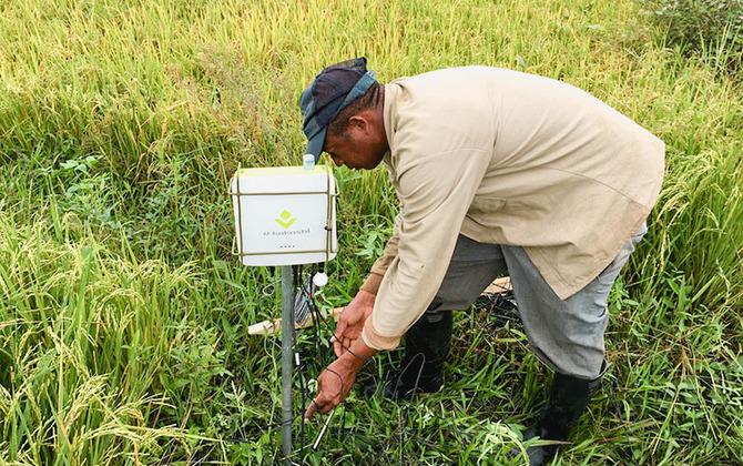 データ農業が世界の食糧問題を救う?「e-kakashi」が挑戦する21世紀型の科学的農業とは