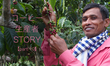 【コーヒー生産者STORY part10】一つの村に二つの組合?組合内の人間関係に見る問題