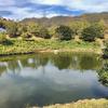 四季の郷公園の「池」(和歌山県和歌山)
