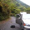 葛城山と吉野川沿いと(ハイキング+自転車)