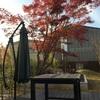 秋の絶景を見に行く2日目──富士五湖(御殿場とか)