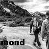 入荷情報 BLACKDIAMOND ELEMENT45