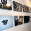 幡野広志さんの個展 幡野広志写真展「いただきます、ごちそうさま。」へ行ってきました。