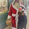 パリのクリスマスはエコロジー?