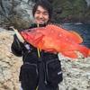 沼津から伊豆半島ロックショアジギング釣行!!回遊魚や根魚が♪