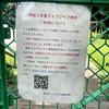 2021年は【事前予約】必須!予約や利用の方法は?【駒沢公園じゃぶじゃぶ池】