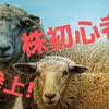 株の初心者が月に1万円稼ぐ~2018年11月 その1~
