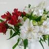 お花のある生活を維持するために。ADHD流、花瓶の選び方