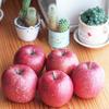 父上、長野のりんごです