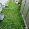 夏草や、と原発汚染水