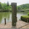 薬師池公園で1歳児と一緒に藤鑑賞してきました