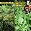 新型コロナウイルスと農業の関係
