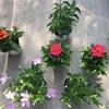 夏至です!春の花もひと段落。今度は秋まで楽しめる花たちを植えました。ハーブ、フィーバフュー満開になりました!