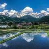 梅雨入り前の白馬村、雪山と新緑がとても綺麗です。いい季節。