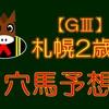【GⅢ】札幌2歳S 結果 回顧