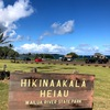 コロナに負けるな!企画:Hawaii大好き作戦9