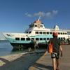 イグアナの島