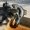 手水舎の龍