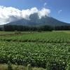 魅惑の北海道 8 積丹半島で憧れのウニ♥