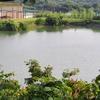 高尾池(福岡県飯塚)