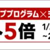 ★yuriko matsumoto もうすぐ終わります!全商品ポイント5倍!と「500円OFFクーポン・制限なし」発行