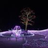国営アルプスあづみの公園(大町・松川地区)のイルミネーションに行ってきました。見て聴いて触れて楽しめる!