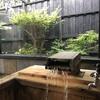 【ゆるり乃湯】鹿児島市郡山町 ~とろっとろの源泉かけ流し、美肌の湯を堪能~