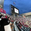 ペンギン三羽でJリーグ観戦!久しぶりのサッカー観戦はイコちゃん抜きだよ(ヤンマー前編)(342)