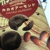 ELLEGARDENが復活!!!