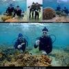 親子でScuba diving!