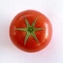 無農薬野菜や低農薬野菜について考えるブログ