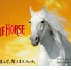 WHITEHOUSE / ホワイトホース 「味、由来、値段」