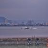 「淡水河(タンスイガ)」の河口沿いの光景 ~「淡水海関碼頭」まで