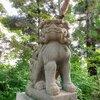 早朝散歩は神社へ行く!個性いろいろ「こま犬」コレクションPART1