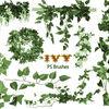 無料&商用可!草や葉っぱ、ツタなどに特化したPhotoshop用植物系ブラシ50種【自然/フリー/装飾/イラスト】