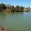 横倉池(愛知県半田)