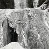 袋田の滝 結氷
