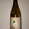 今日のワインはスペインの「シー・オーガニック マカベオ」1000円以下で愉しむワイン選び(№94)