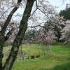 季節ごとの旅先[春・夏編](お題箱の質問より)