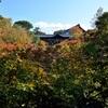 東福寺の紅葉、臥雲橋と通天橋が撮影禁止か確認してきた。