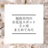 【桜を大満喫】福島市内のお花見スポット5ヶ所をまとめてみた