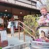 深大寺🌸美味しいお蕎麦《湧水》