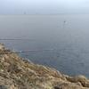 1月12日 錦 乗越 石鯛釣り