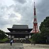 【SFC修行】⑦-2増上寺と六本木ヒルズA&Dストア。