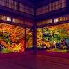 秋の京都ツアー【古都京都の風情の感じる】